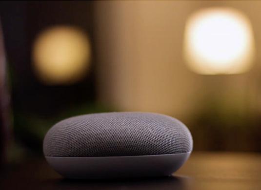 Domina Smart integrazione con assistenti vocali e Smart Speaker